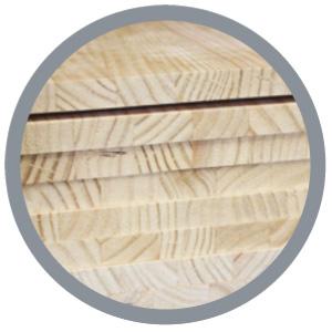 alistonado-pino-radiata